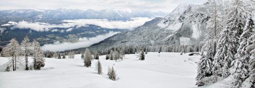 Winterwunderland auf der Schlanitzen Alm